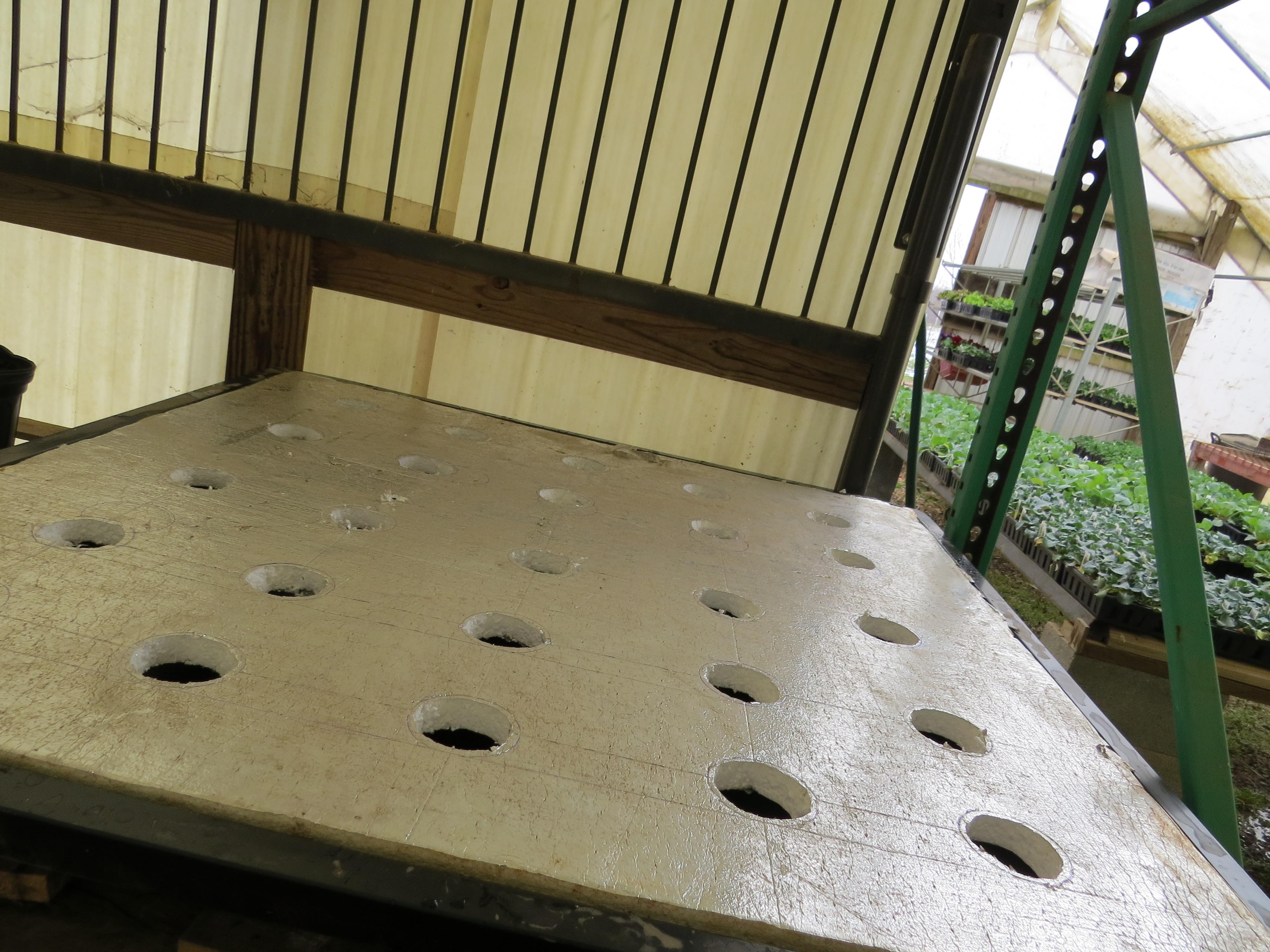 Flood Table Hydroponics