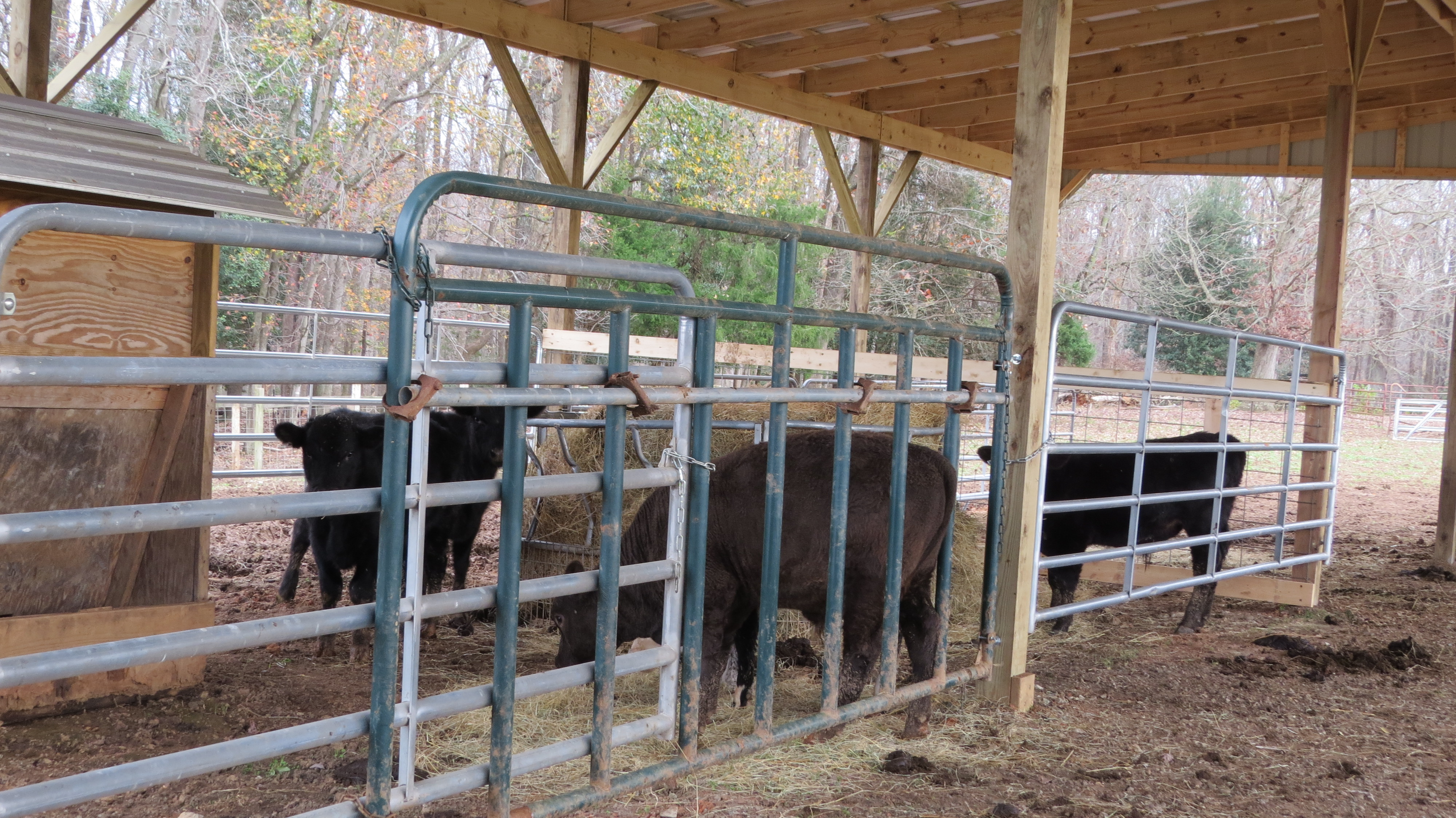 feeder lot homemade cattle details wooden metal m catalog hay index